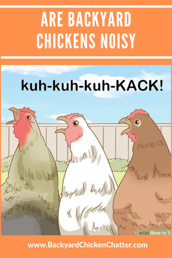 Backyard Chicken chatter Pinterest post