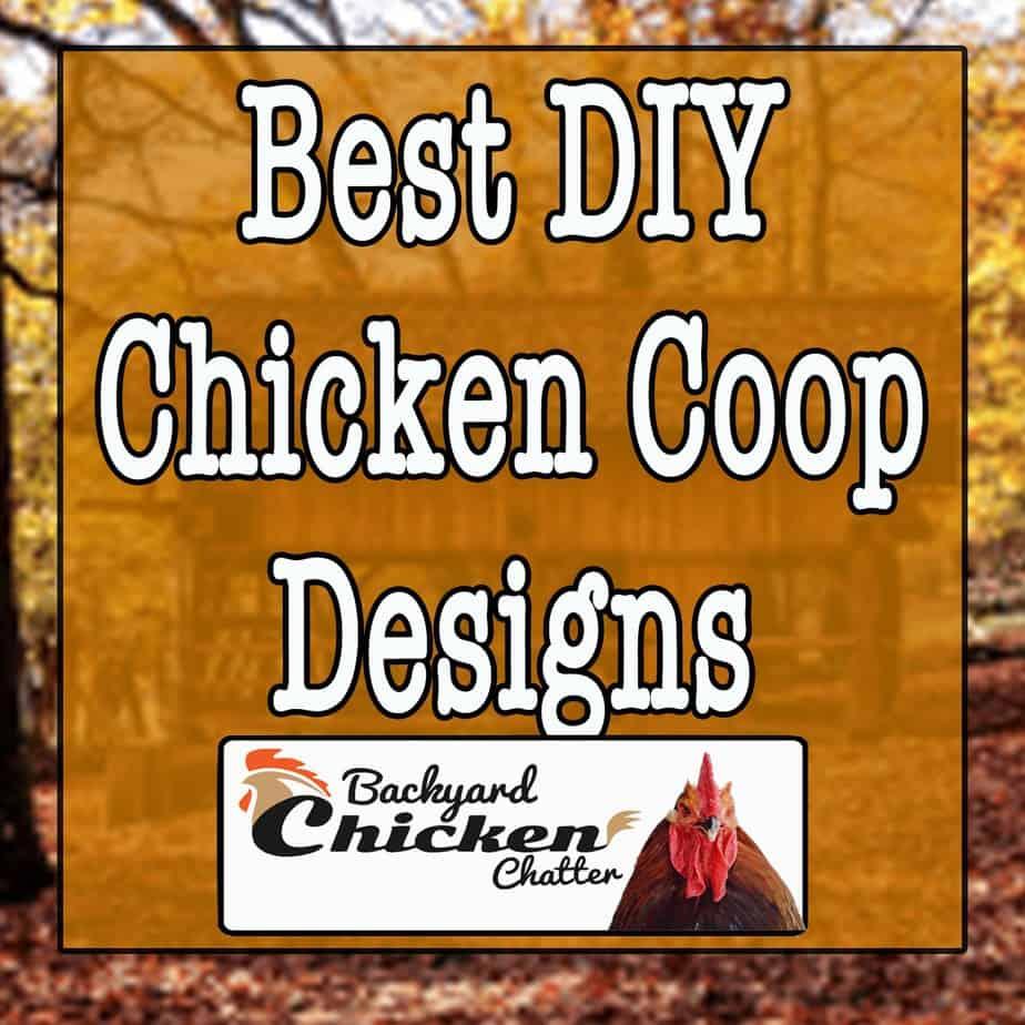 Best DIY Chicken Coop Designs