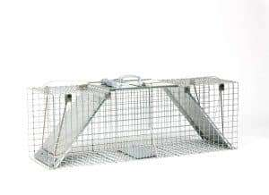 Easy set chicken trap crate