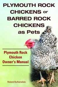 Barred Plymouth Rock manual