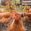 Ideas to make free range nesting boxes