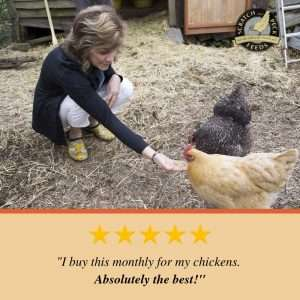 Naturally Free Organic Layer Feed for Chickens