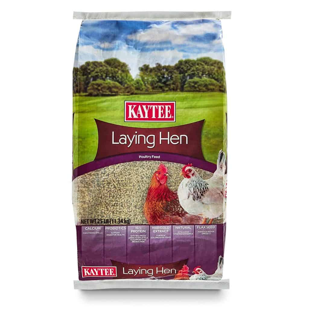 chicken Laying feed
