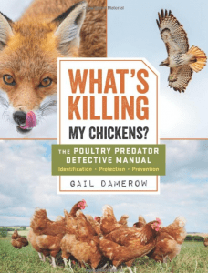 What's Killing My Chickens