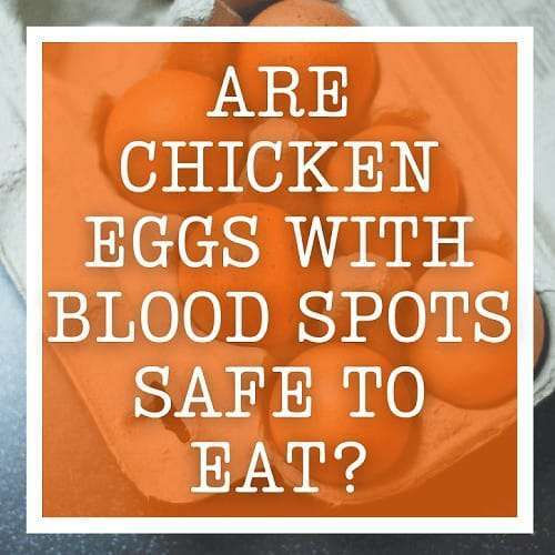 Are Chicken Eggs With Blood Spots Safe to Eat?