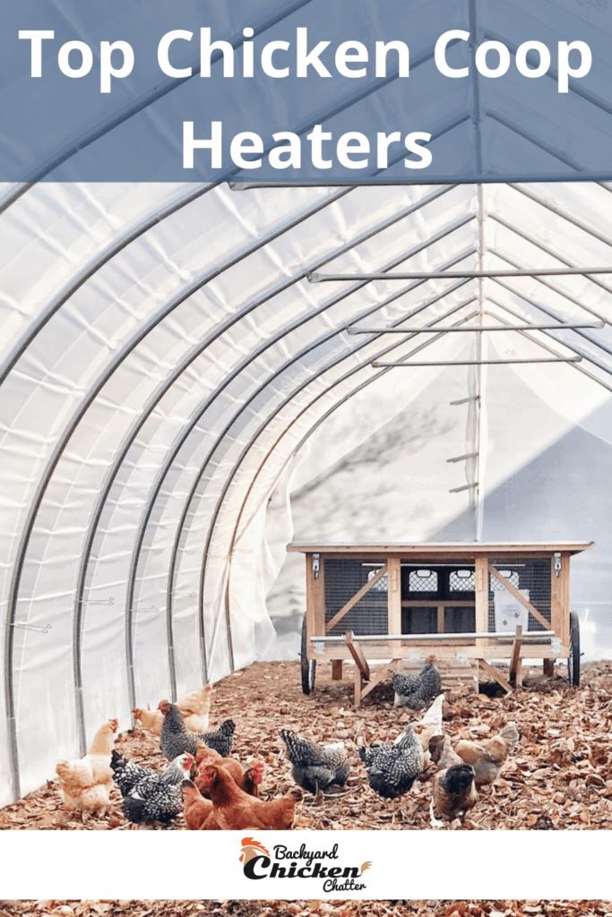 Top Chicken Coop Heaters