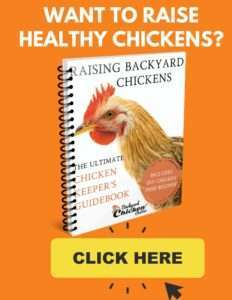 Ultimate Chicken Keeper's Guide