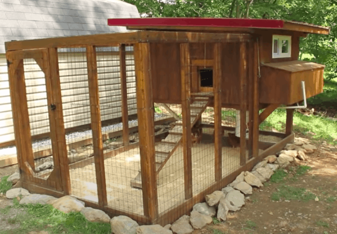 What Do I Need For My First Chicken Coop