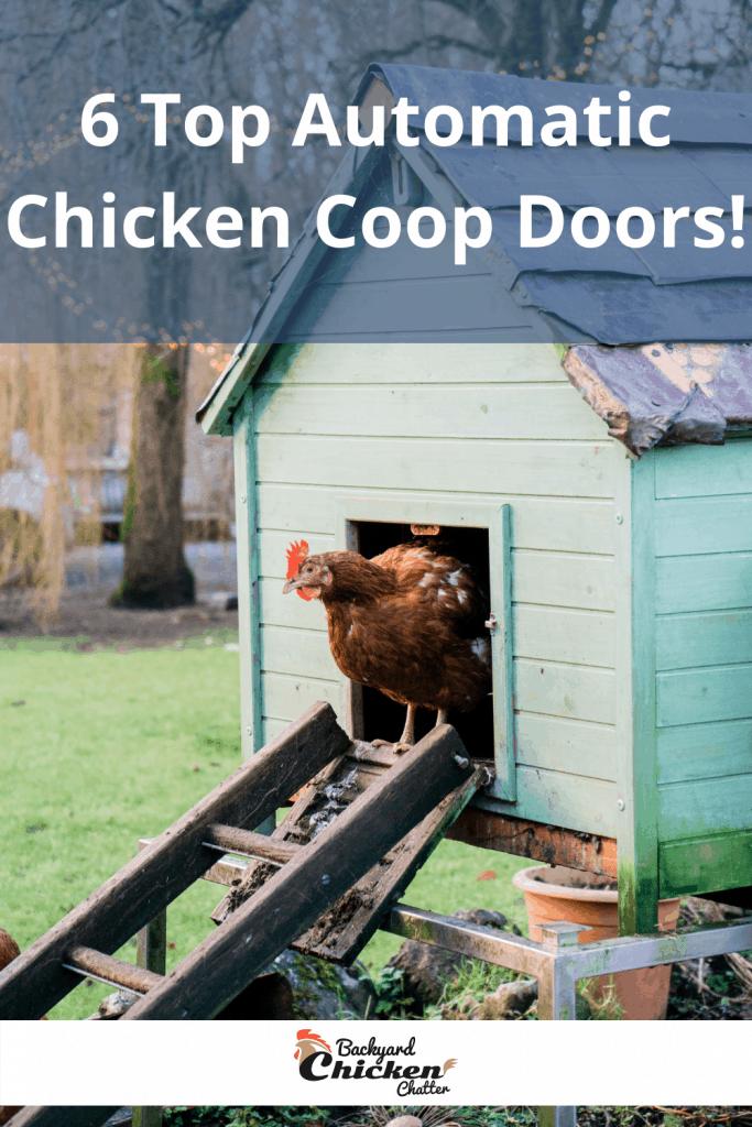 6 Top Automatic Chicken Coop Doors!
