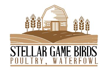 Stellar Game Birds Poultry Waterfowl